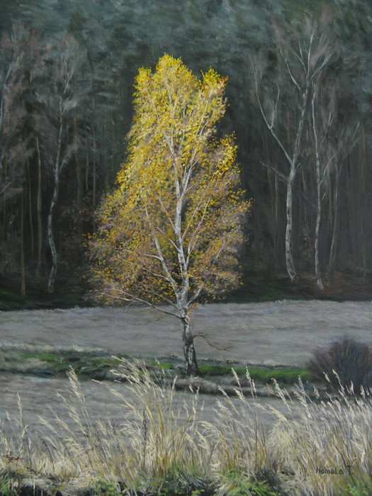 Malba Krajiny Kresba Rezba Akvarel Homola Tomas Houmy